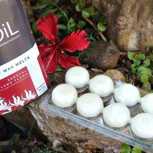 Wax melts South Africa, essential oil wax melts