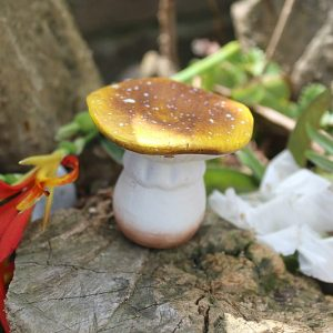 garden mushroom, Mushroom garden decor South Africa