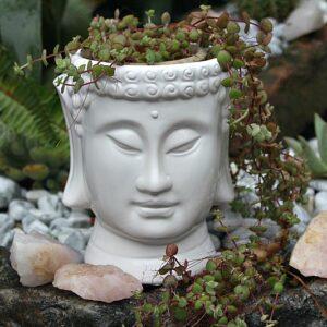 Buddha head pot plant holder, Buddha garden and home decor South Africa