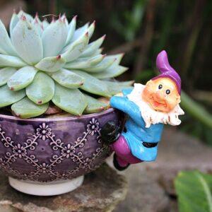 Pixie, garden pixie, flower pixies