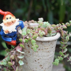 Hanging pixie, hanging pixie for a garden pot