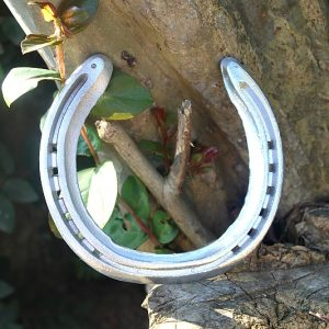 horse shoe, horse shoe for good luck South Africa