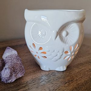 Ceramic owl oil burner, oil burners